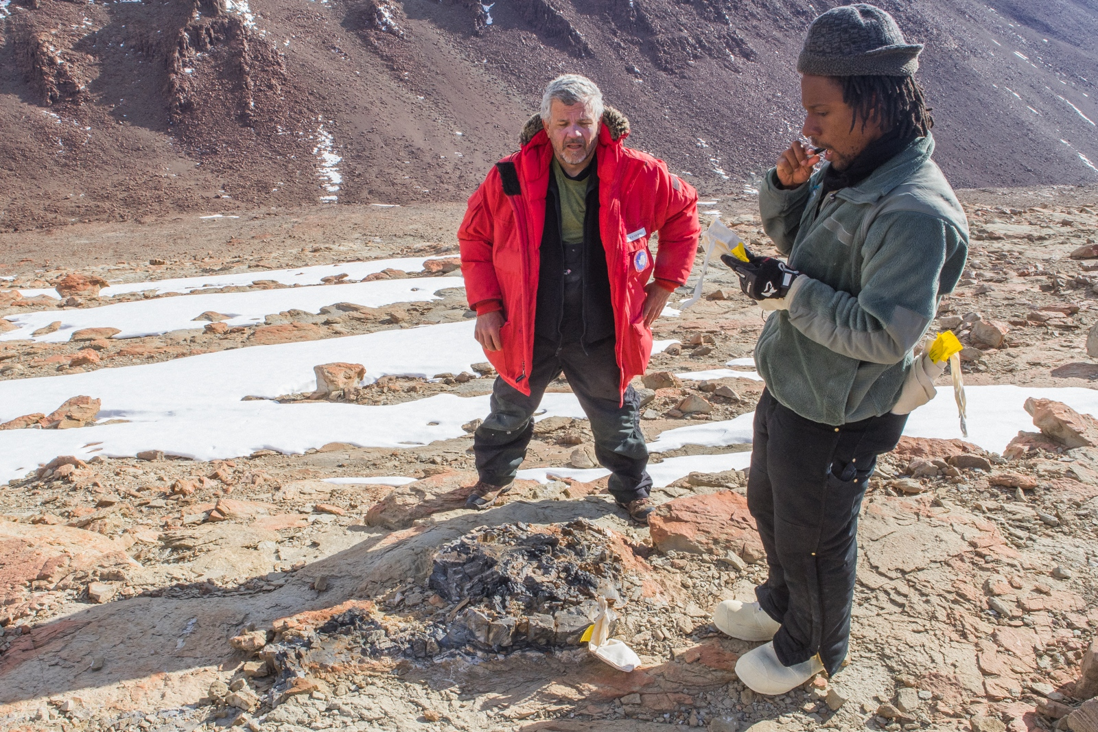 Dr. Brian Atkinson and Dr. Rudolf Serbet taking notes and samples of a large fossilized tree stump. In fact it was one of the largest samples they discovered at Collinson Ridge. December 2017.