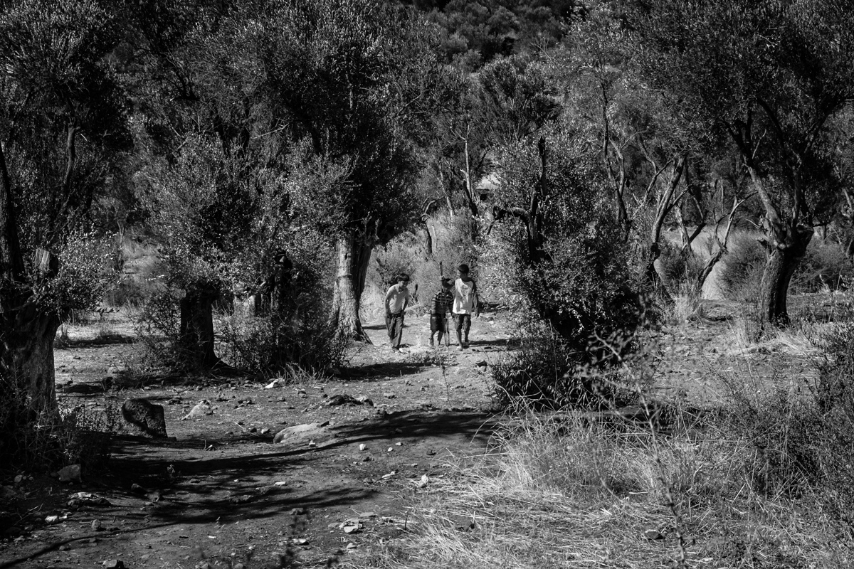 A group of Afghani children playing in the hills surrounding Camp Moria, Lesvos, Greece.