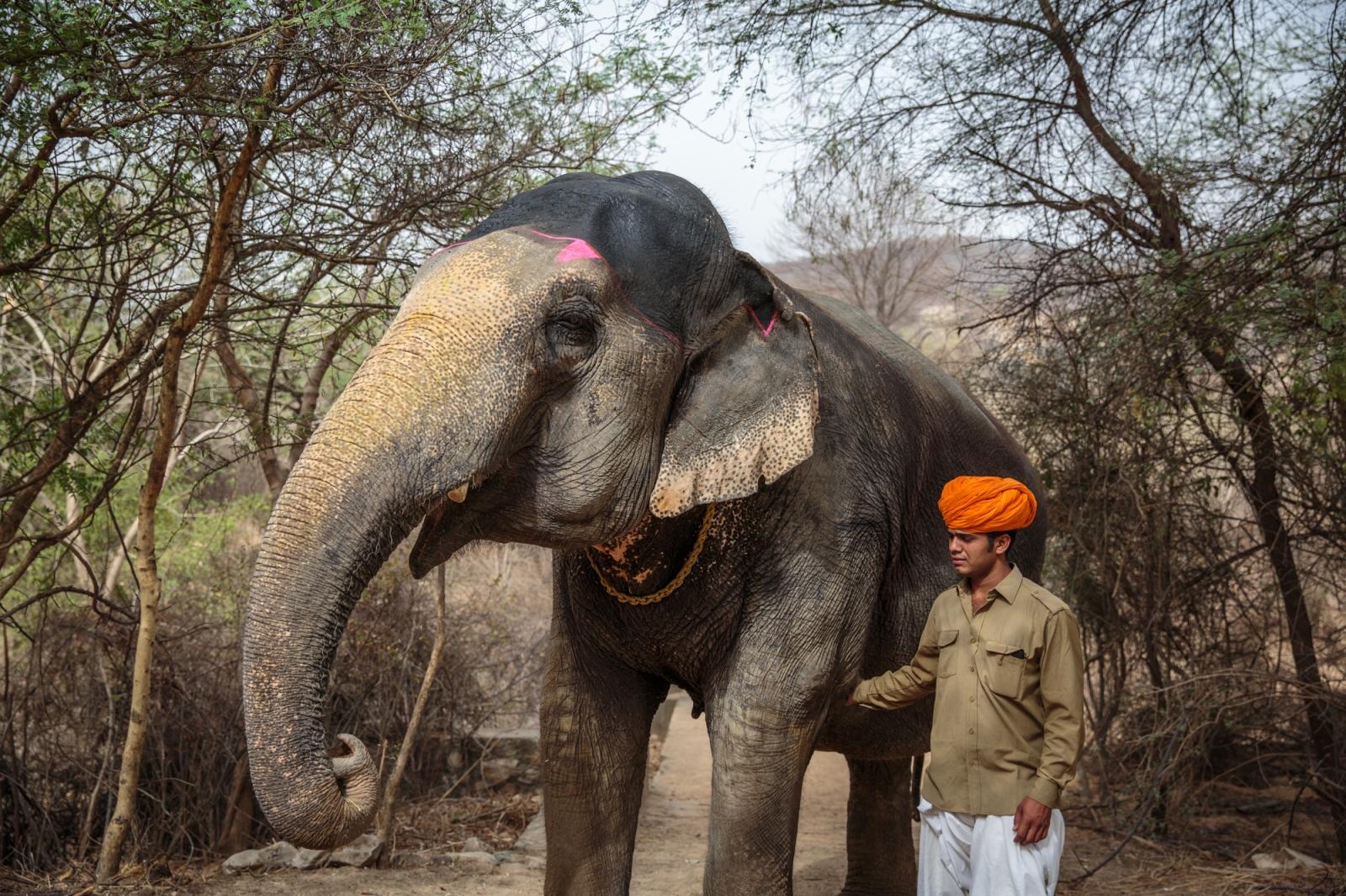 AFAR Magazine A Tour of Jaipur