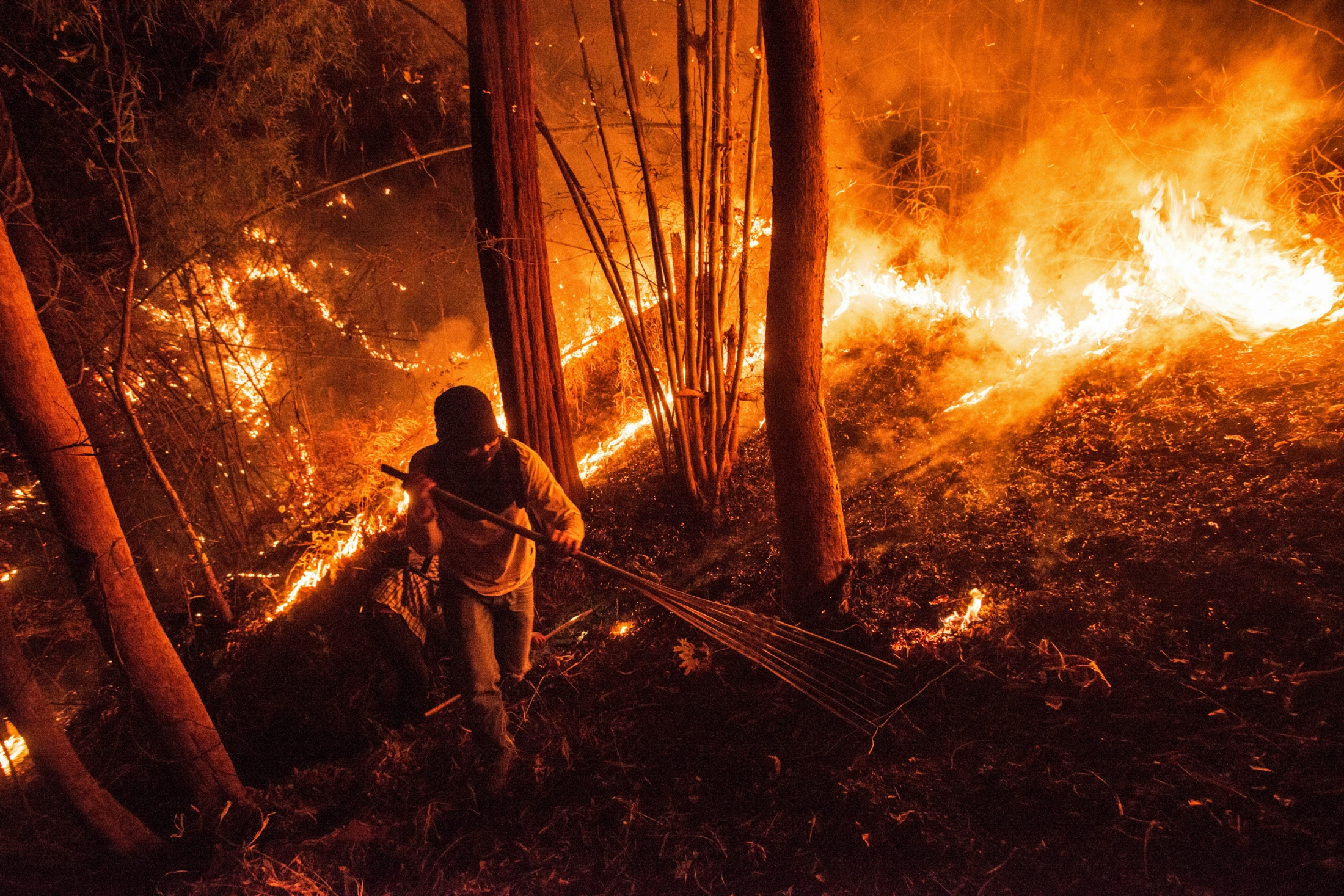 A firefighter hikes through a forest fire to control the spread of fire occurred during the night time by making a firebreak. 99% of the annual wildfires are caused by humans.