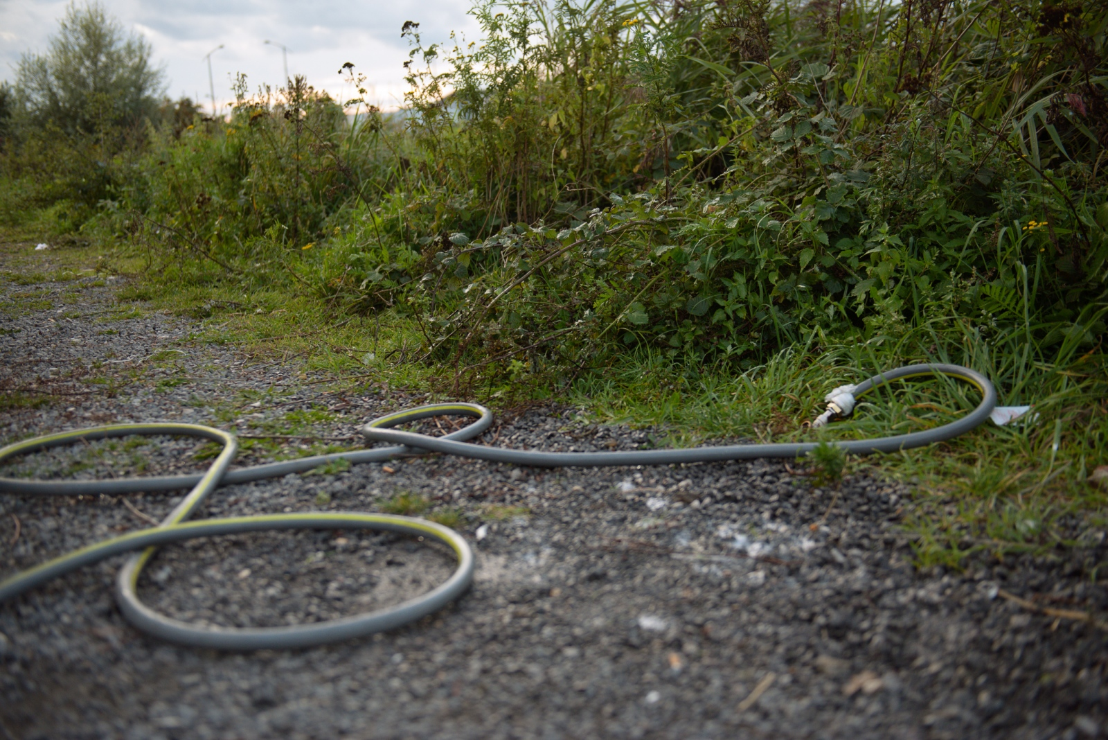 August 31, 2017 - Calais, France. The hose pictured here was the only access to safe water refugees had for most of 2017. The men, mostly Afghans, do not live near any of the water points that have been made accessible by the government-led ngo.