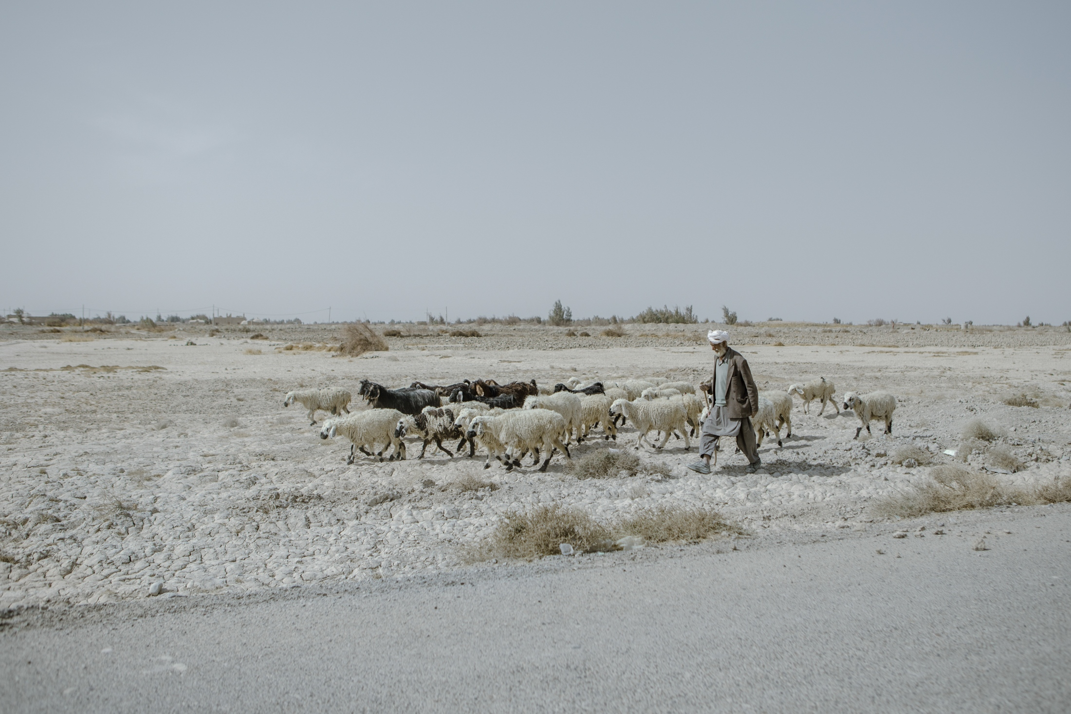 Mardan, 63, who is from Poudineh village in the proximity of Iran-Afghanistan border, has lost more than 15 of his live stocks due to the draught, water and feedstuff shortage, in the course of 2 years. Sistan province.Iran.2018