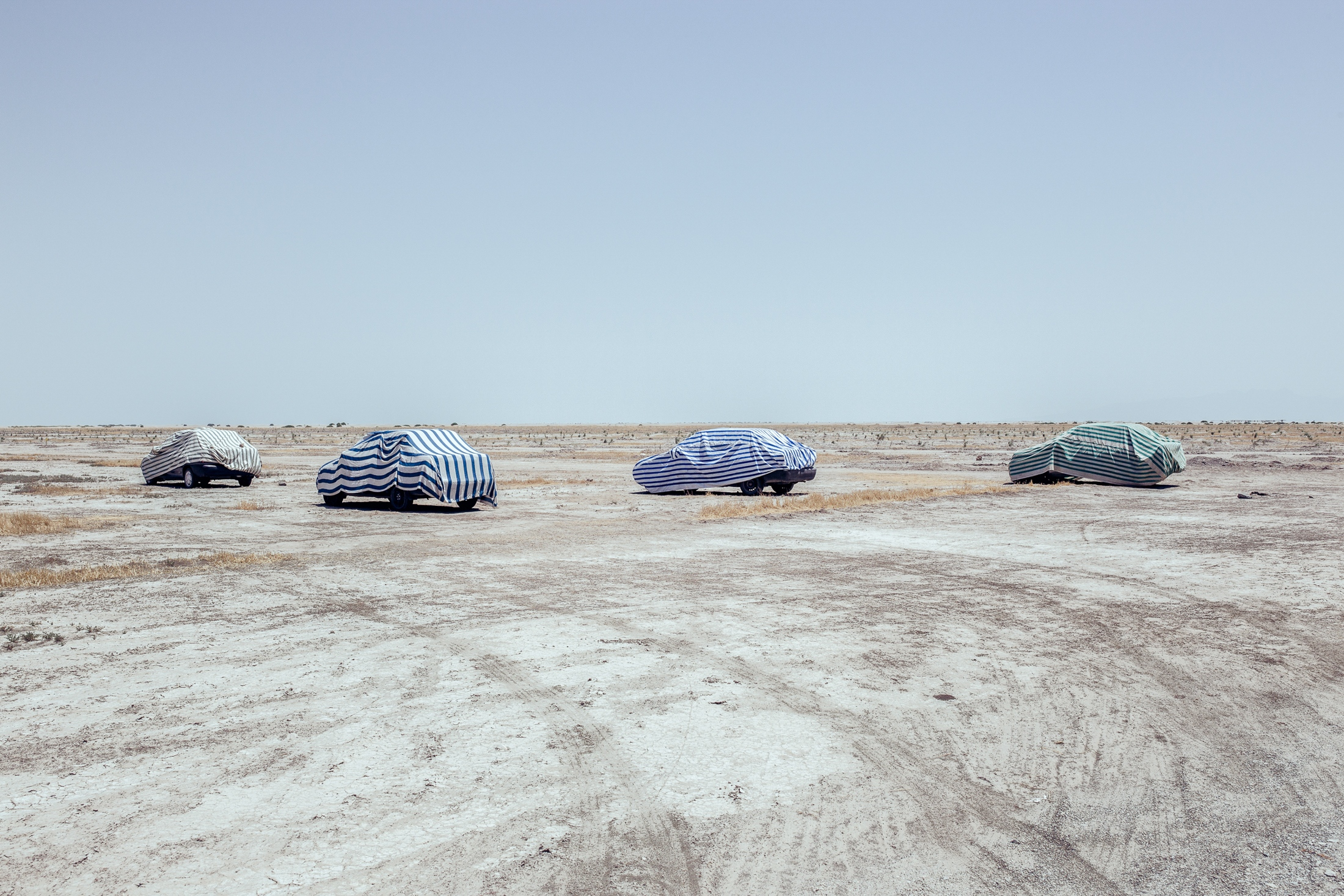 In an effort to prevent salt storms, the Urmia Lake restoration department plants trees in part of the lakebed that has completely dried up. White-collar staff visiting the site now park their cars where once the lake was full of water. Lake Urmia|East Azerbaijan|Iran.2015