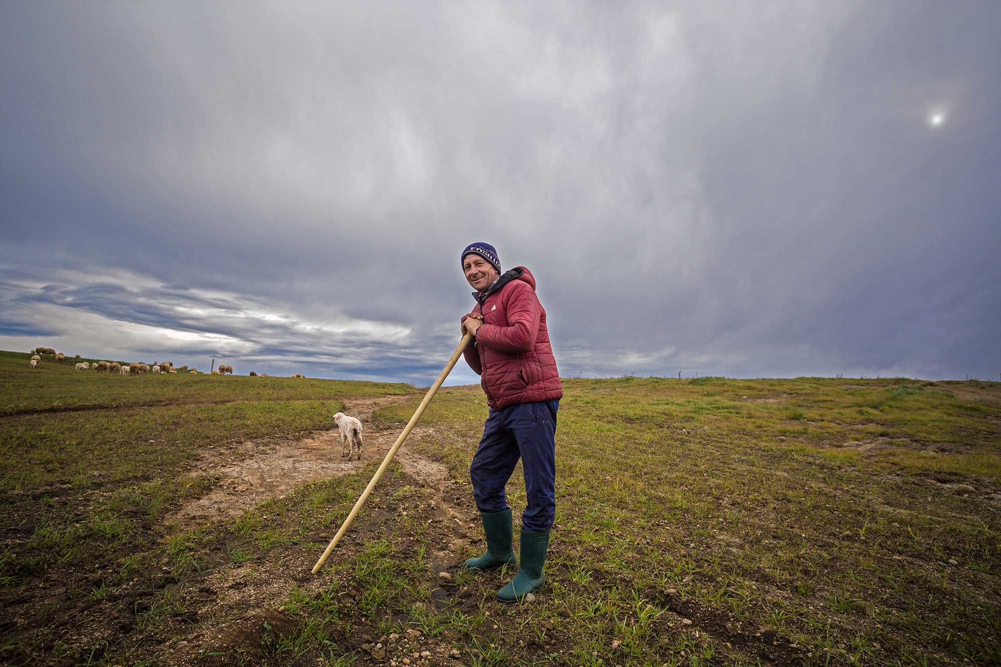 A local shepherd