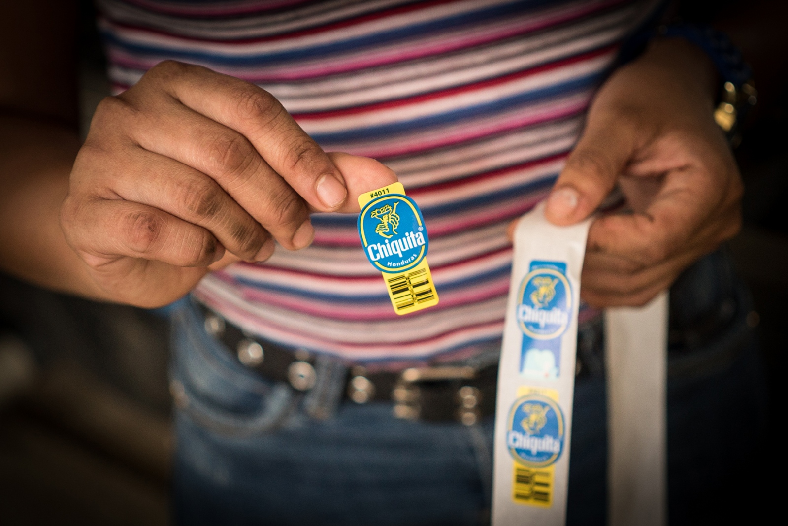 A worker handles the Chiquita stickers used on produce to be shipped overseas, mainly to the United States. The exploitation of Chiquita employees allows for cheaper prices for bananas in U.S. supermarkets, but the workers hope consumers will continue to buy. The fewer bananas foreign consumers buy, they explained, the more chances Honduran farmers have of losing their jobs.