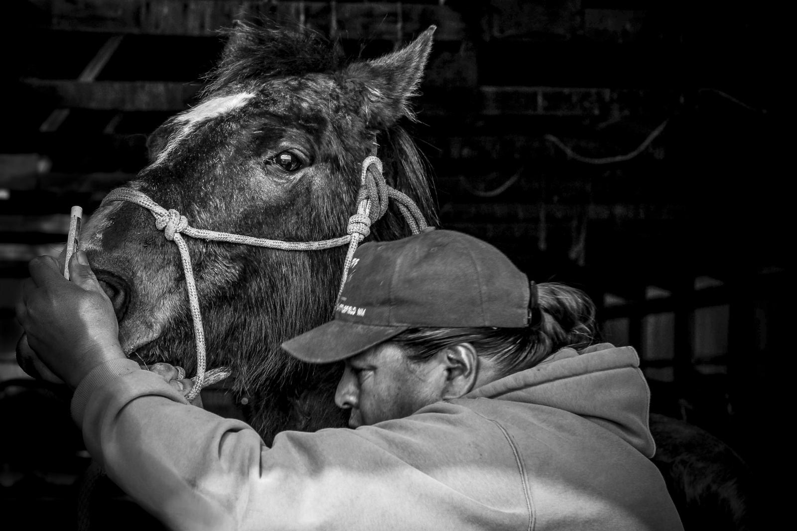 Photography image - Loading ranching_(2).jpg
