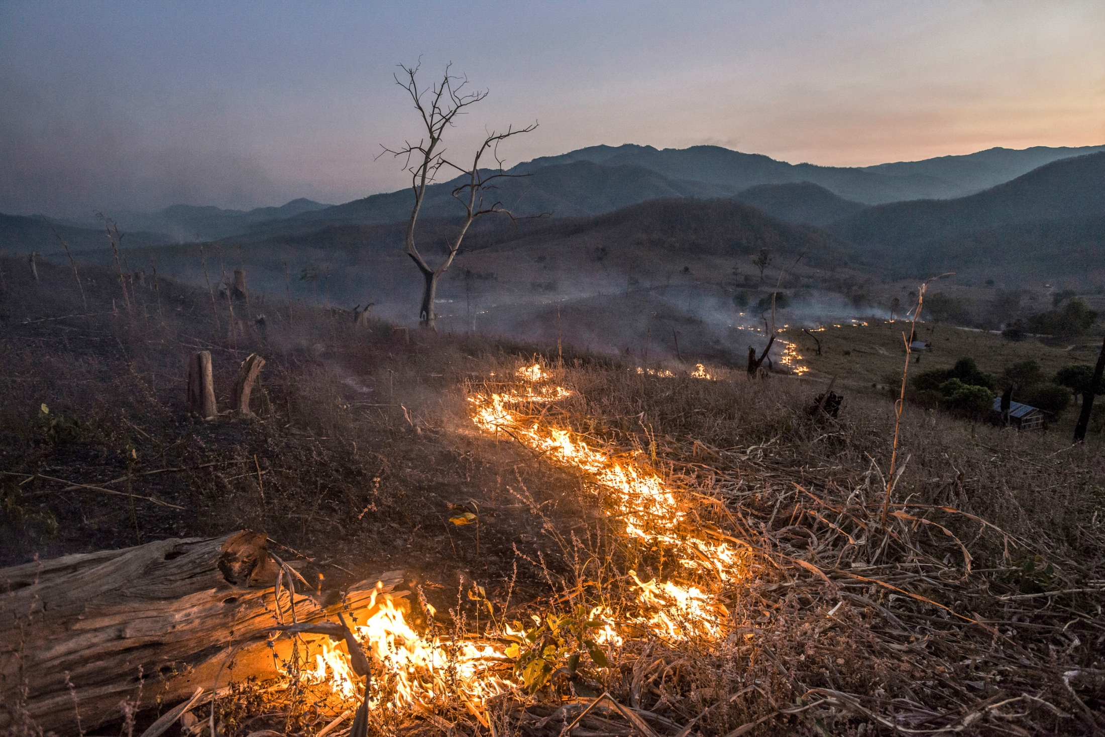 Thousands of acres of forest have been turned into mono crop agricultural areas. Wildfire occurs every year which is by burning crops together with a period of heavy drought causes a longer widespread of wildfire leaving bald mountains and scarred landscapes, further contributing to global warming and extreme weather events. February 2, 2015.