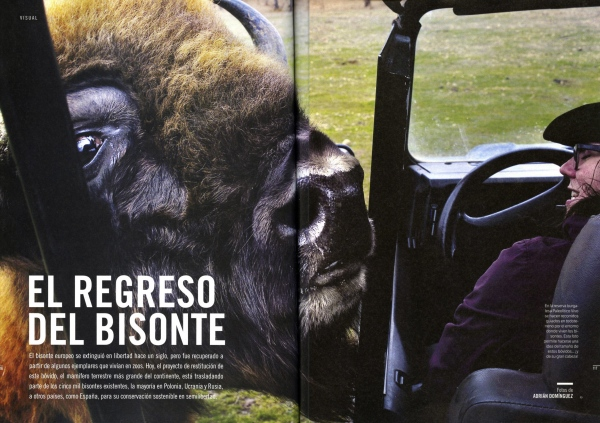 Muy Intereante Magazine (Spain)  5 pages