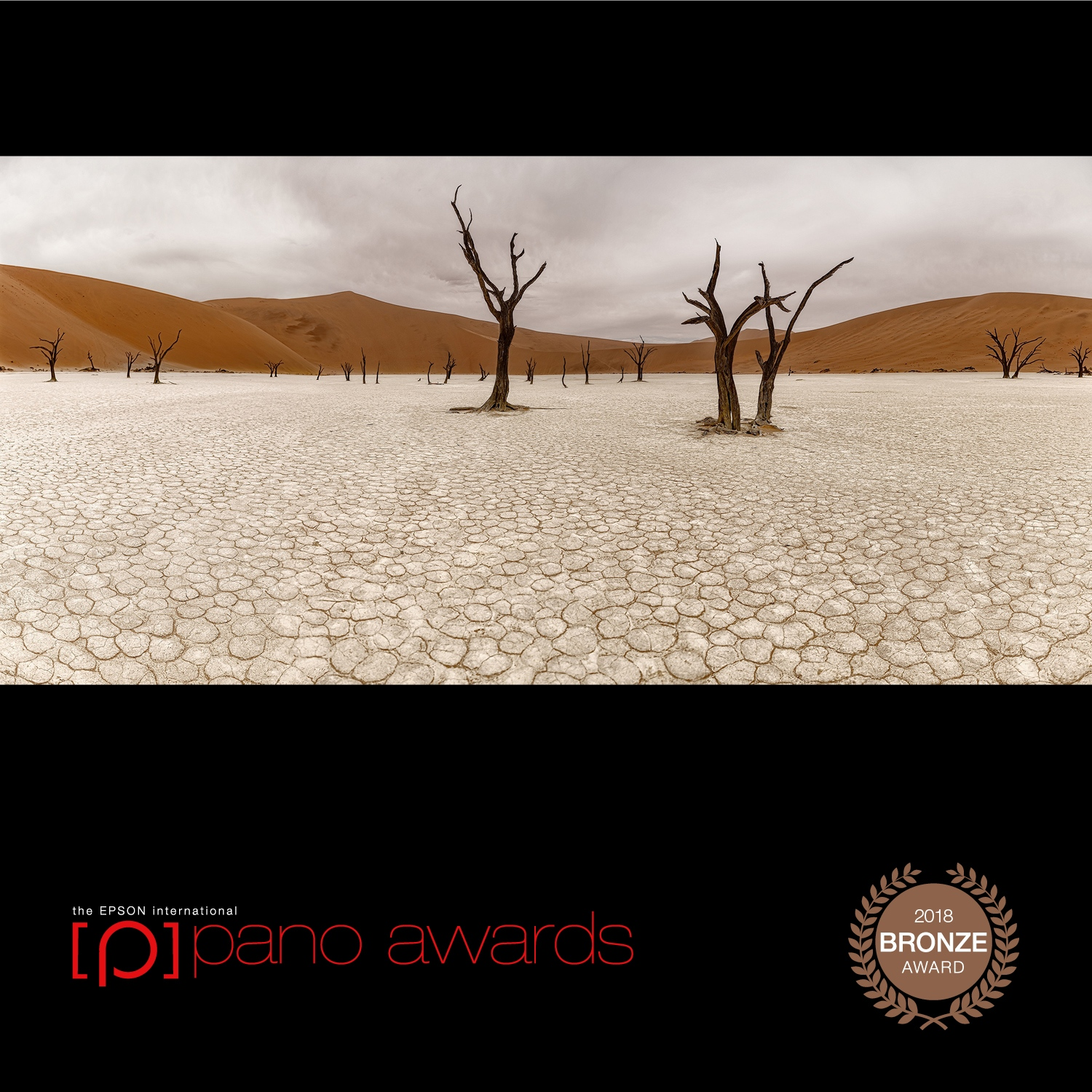 Art and Documentary Photography - Loading 2018-Epson-Pano-Awards-Amateur-Bronze-103.jpg
