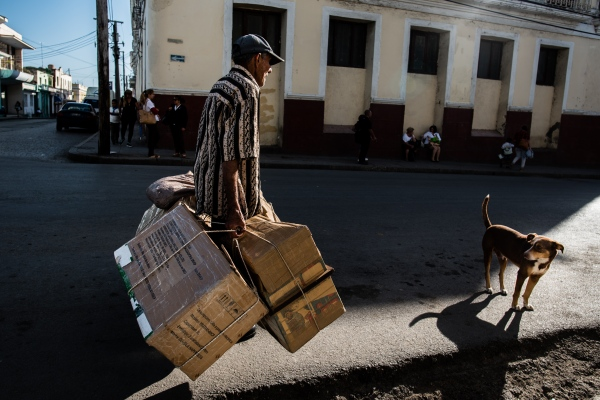 A dog waits for his master in the city of Cienfuegos