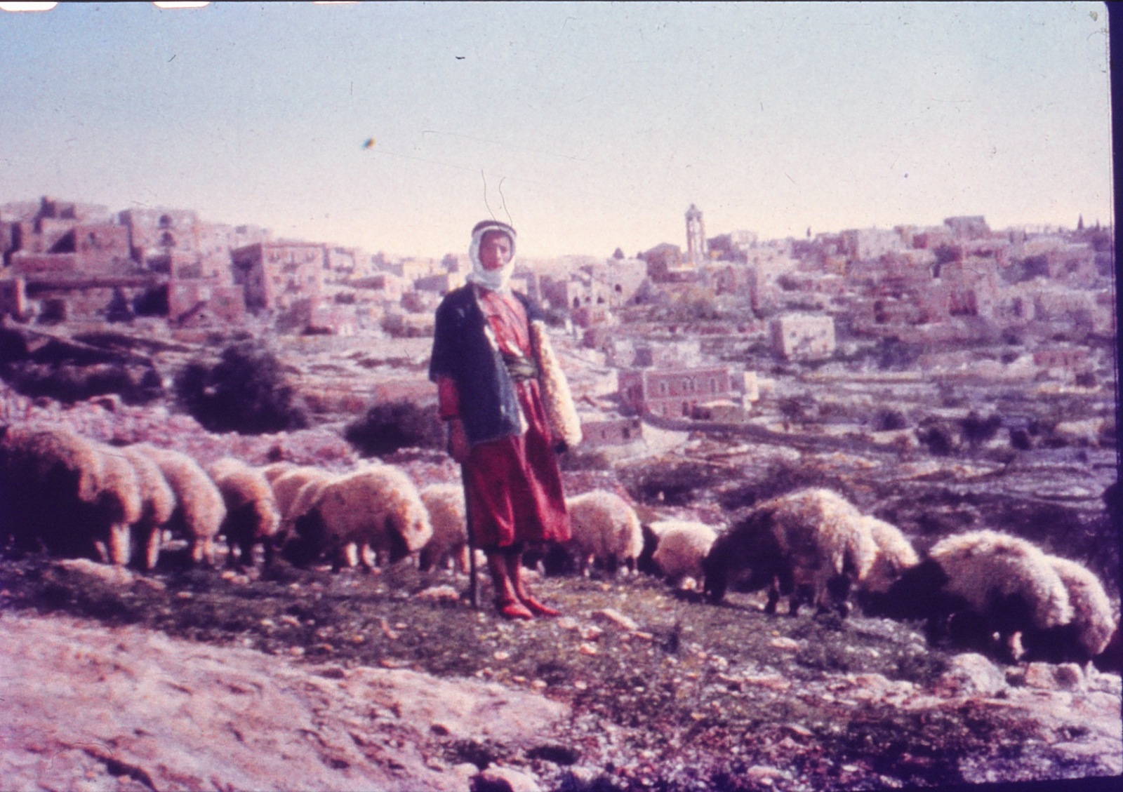 Shepherd's Field in Bethlehem