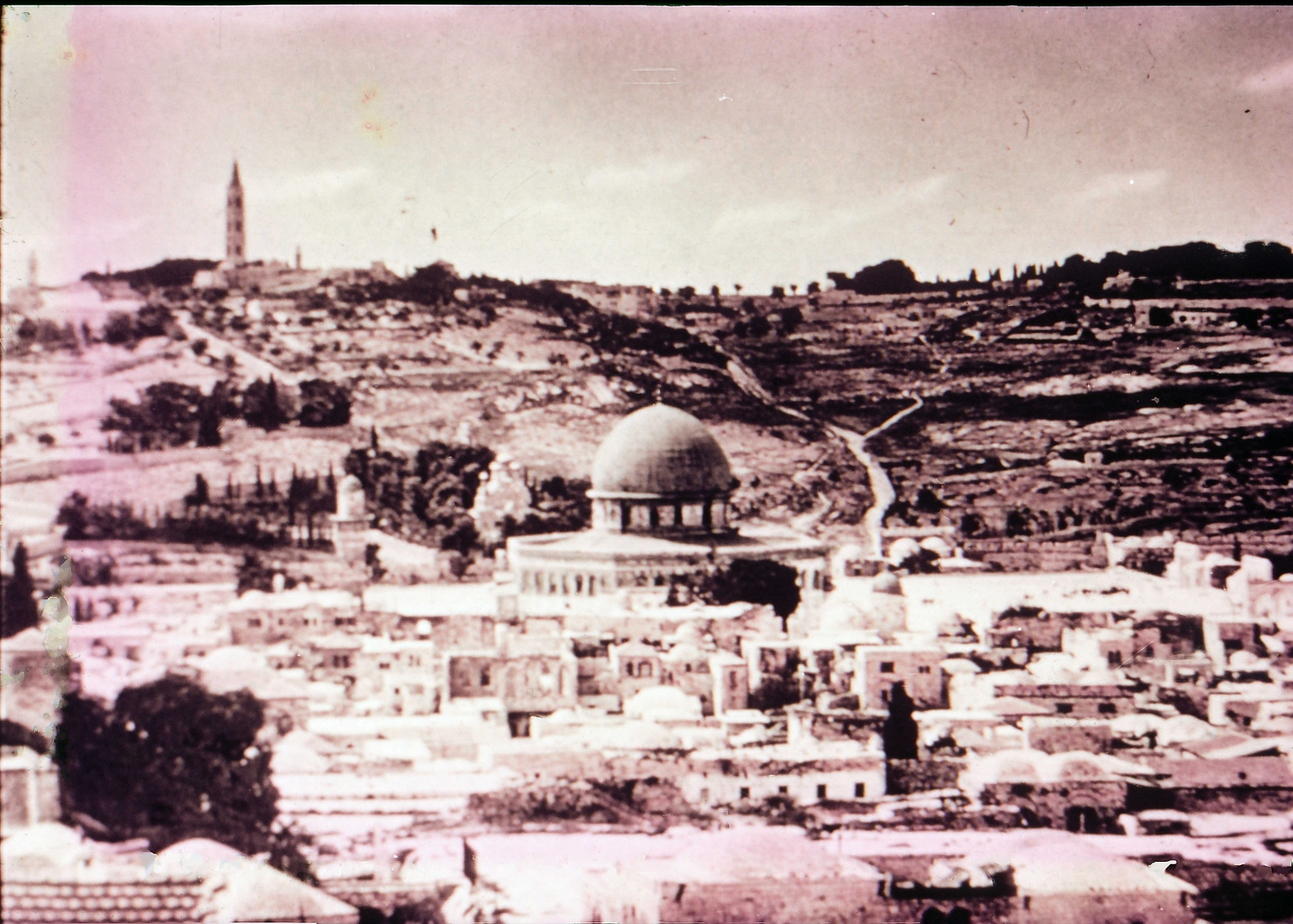 Mount of Olives from Temple Area
