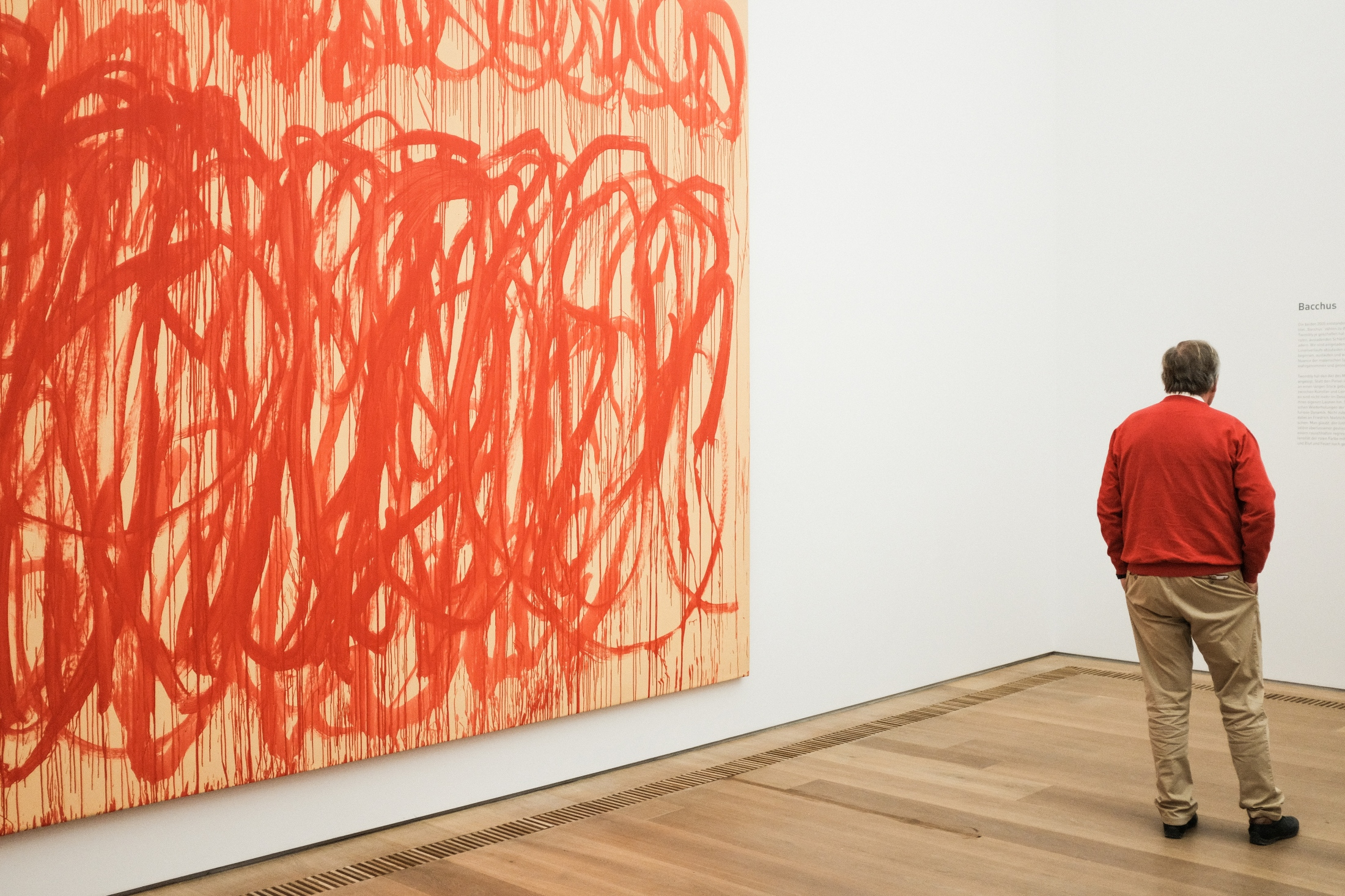 collection brandhorst munich - cy twombly