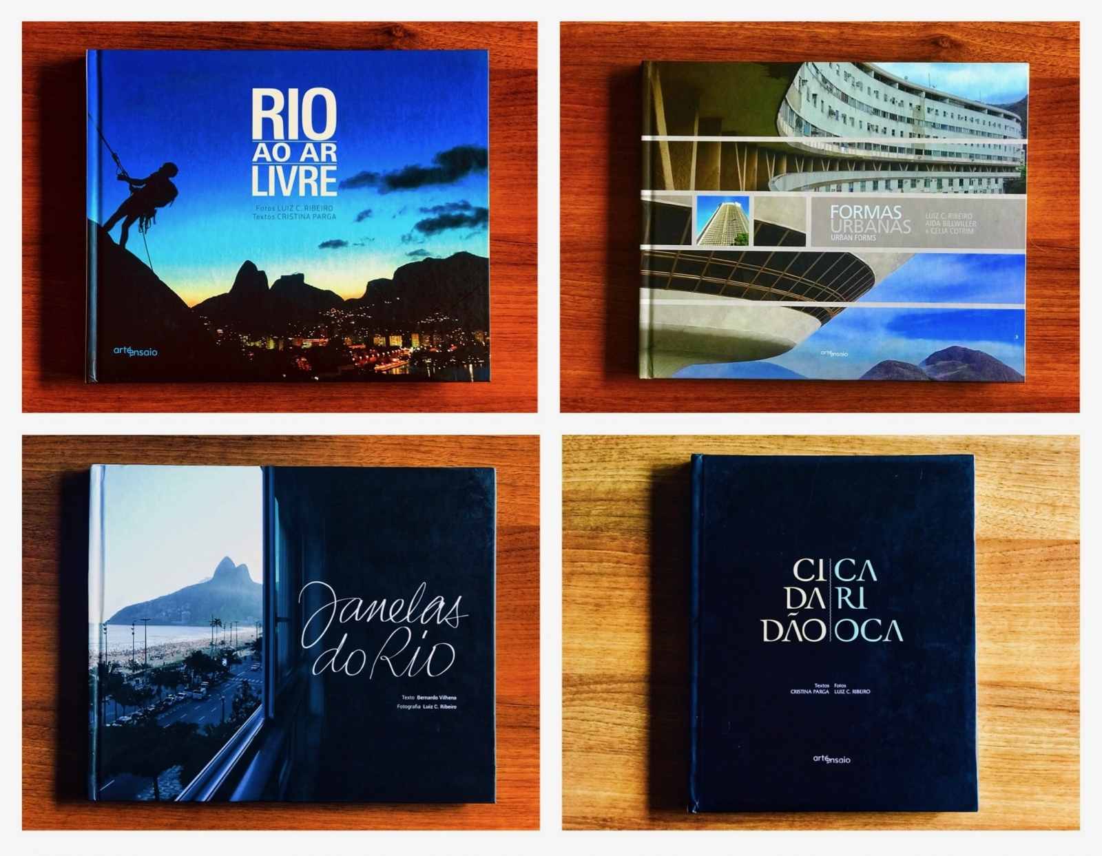 Luiz C. Ribeiro books published