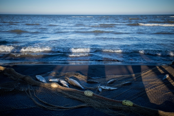Caspian Sea pollution