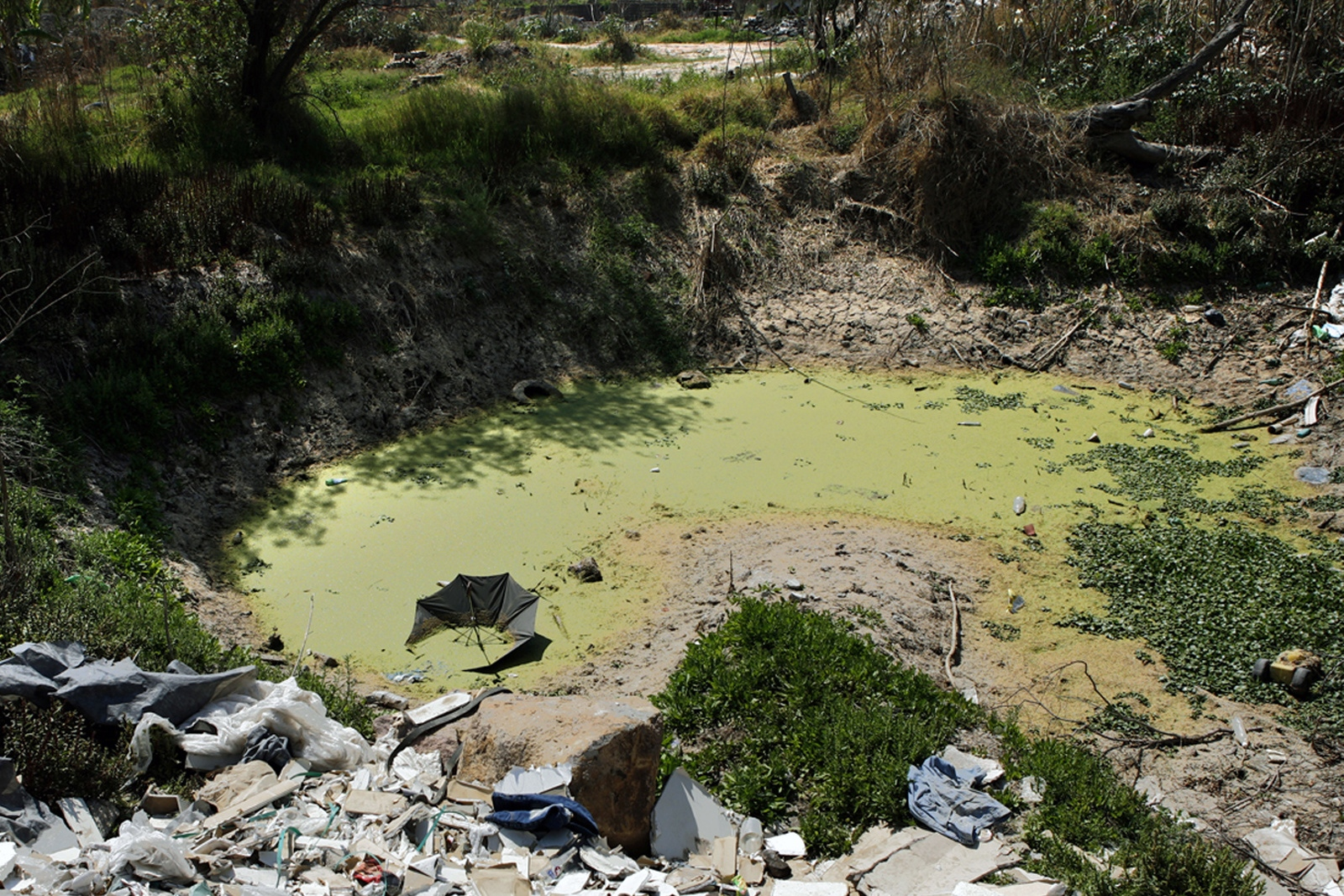 The natural water available to communities on the outskirts of Guadalajara is often stagnant and unusable.