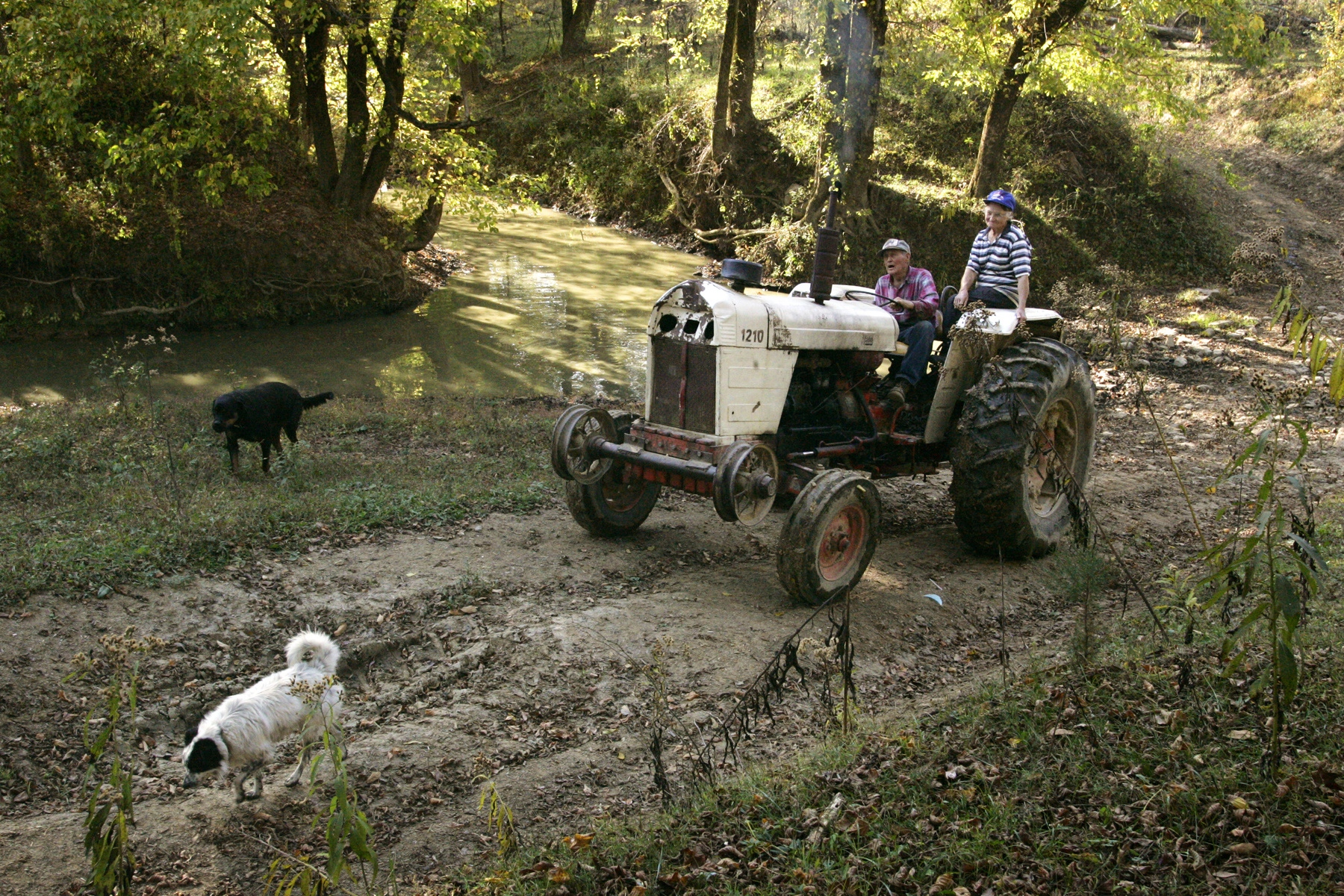 Bert and Louise Buntain, inseparable since marrying in 1942, ride home on their 1954 David Brown tractor after calling their cows.