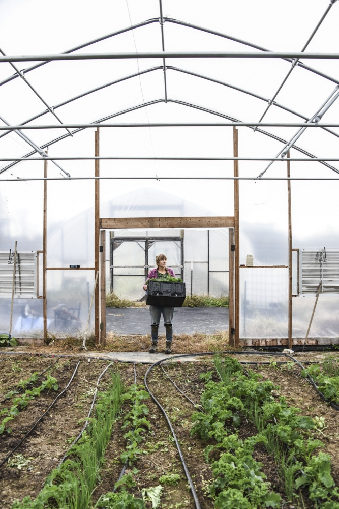 Millenial farmers for The Guardian