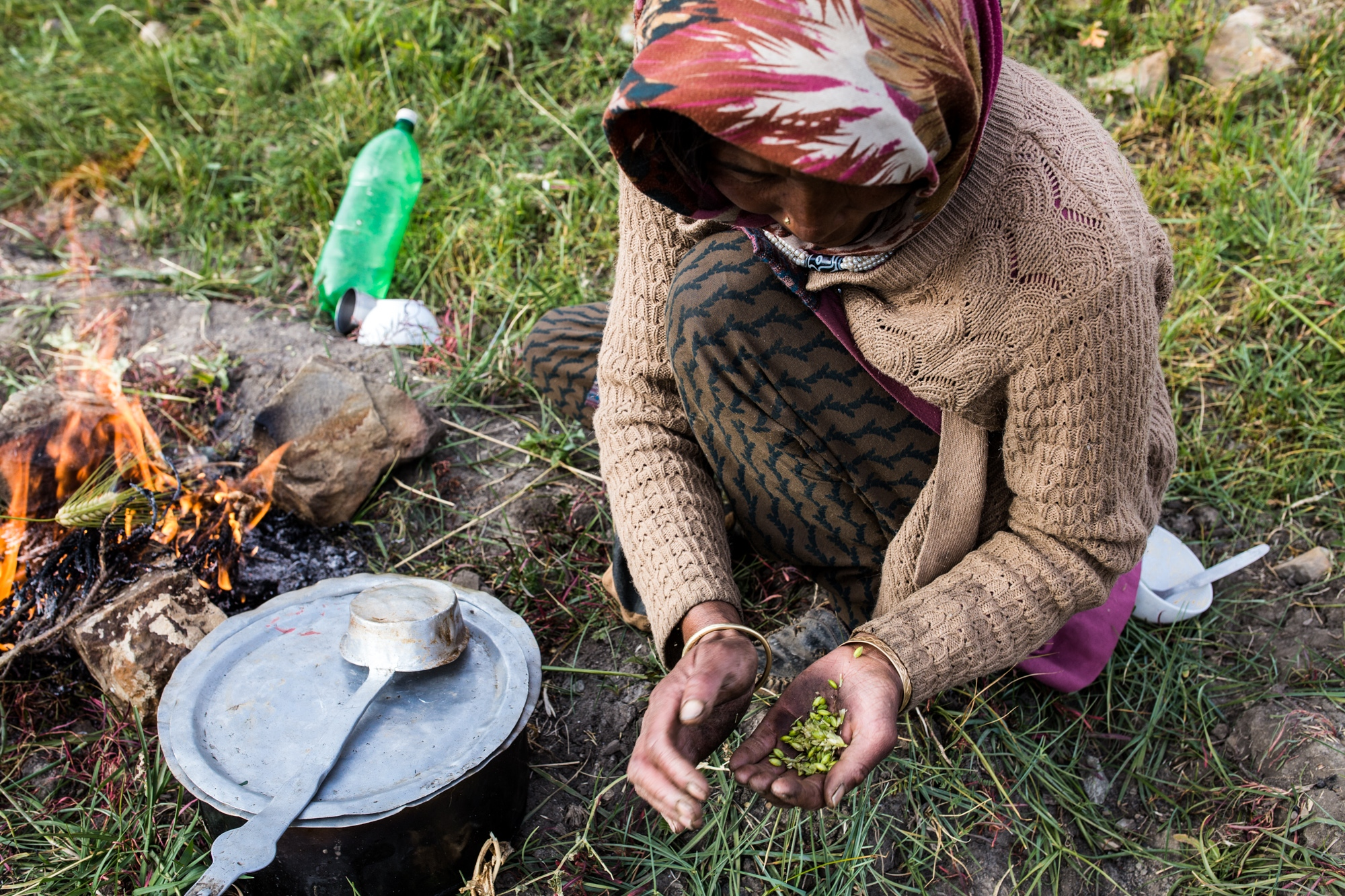 A woman roasts and presents freshly picked barley from her crops in the Indian Himalaya. Water shortages due to glacial retreat and declining snowfall are creating the foundations for food insecurity across the mountain regions of Asia.