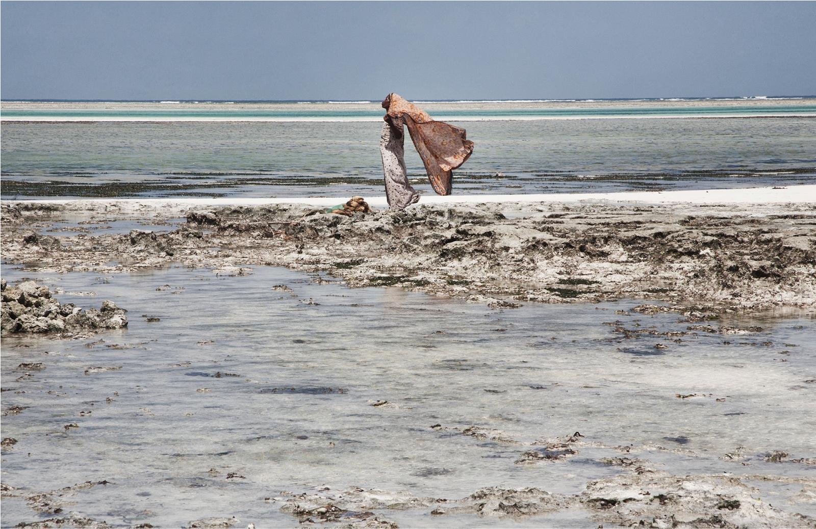 Seaweed Farmer, Jambiani