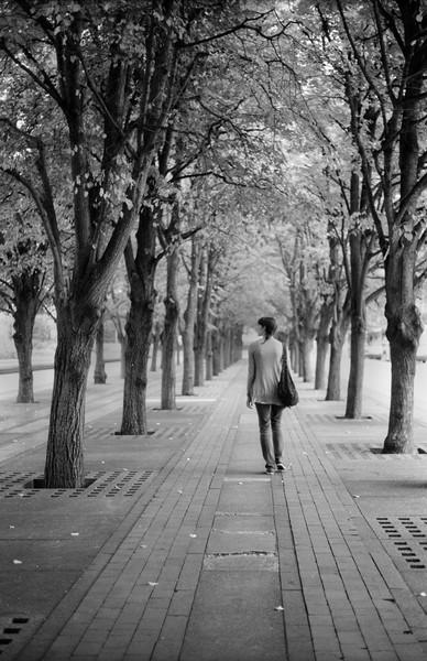Art and Documentary Photography - Loading Meg_Trees_large.jpg