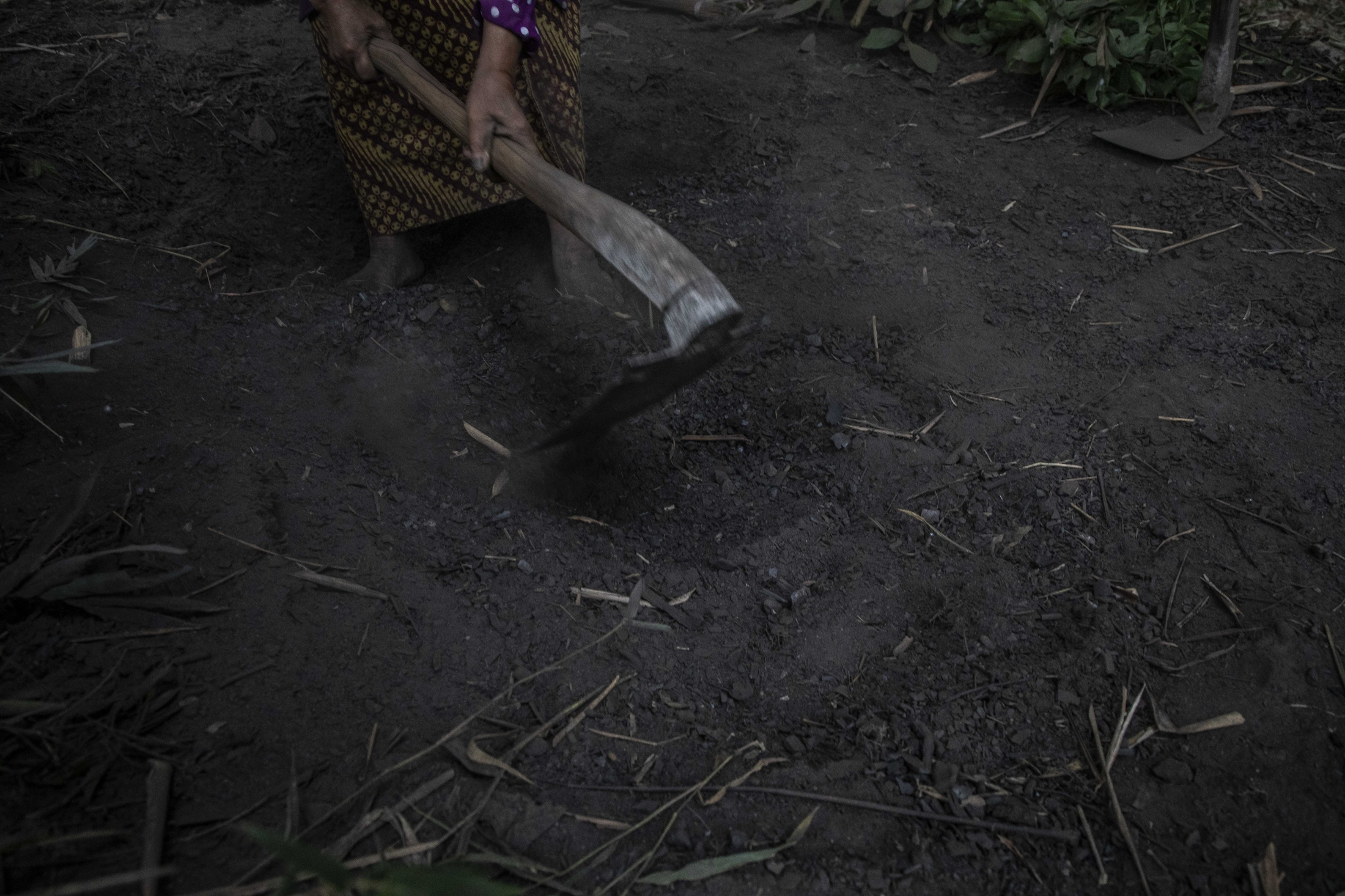 Mbah Sudiwiyono digging a whole into the ground to prepare the the fire to make charcoal. Despite her persistent and hard work she remains very poor receiving about 15000 to 20000 Indonesian rupiah (1 to 1.30 US Dollar) for one kilo of wood coal and sells in big packs of about 30 kilograms at irregular times. She can only produce charcoal in the dry season from May to September.