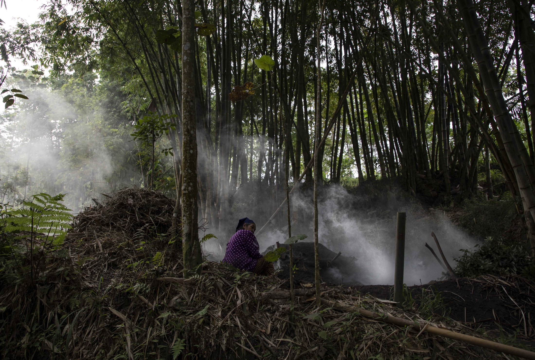 Early in the morning, Mbah (grandmother) Sudiwiyono, 77, patiently observes the slowly burning fire she regularly lights to make charcoal. She is the only inhabitant of Palemsari, one of the highest villages on Mount Merapi. While all members of her community either died in the last devastating volcanic eruption (in 2010) or moved to a relocation village, she decided to stay in the dense forest as it allows her to be close to nature and on the land that belongs to her.