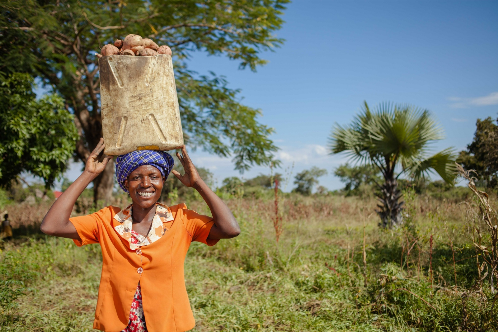 Kokoi poses for a portrait carrying harvested sweet potatoes from her garden in Soroti, Eastern Uganda. Farm Africa's Orange Sweet Potato Project is helping farmers like her produce, process and sell high-quality orange sweet potatoes so they can grow their incomes, improve their diets and build healthier, more prosperous futures for themselves and their communities. For Farm Africa
