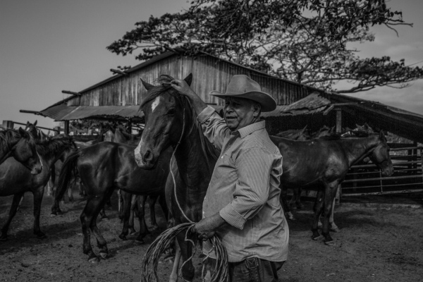 Cowboys in Colombia's Eastern Plains
