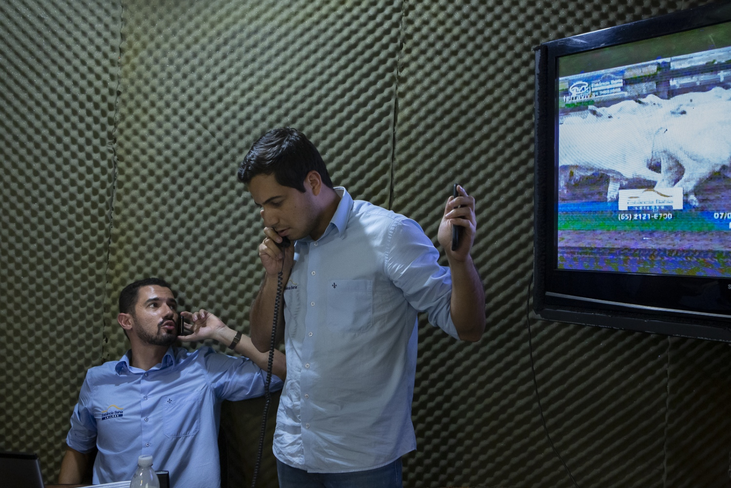 Max Queiroz and Tulio, commercial auctioneers, selling at the virtual auction Estancia Bahia, where animals are sold live on television to buyers from all over Brazil. Cuiaba, Mato Grosso, Brazil 2017