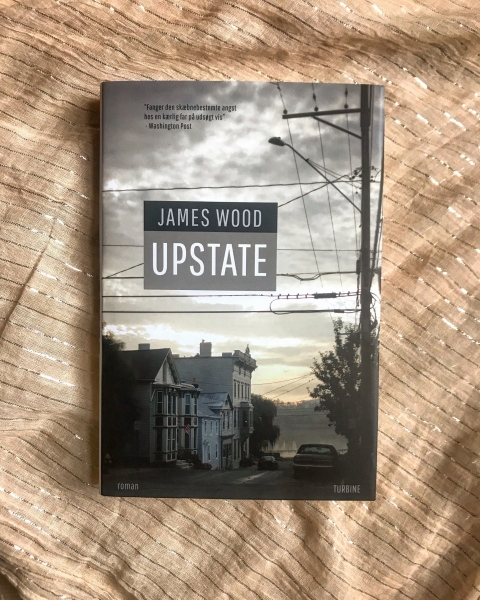 Book Cover for James Wood's Upstate, Turbine DK