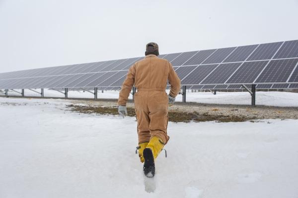 The Solar Farmer