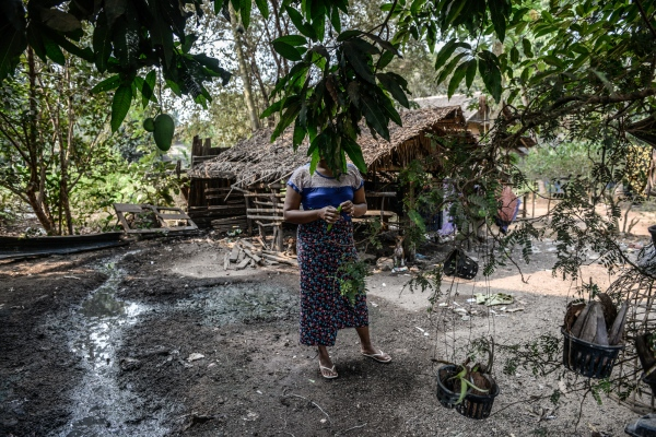 Land Law Could Displace Millions In Myanmar