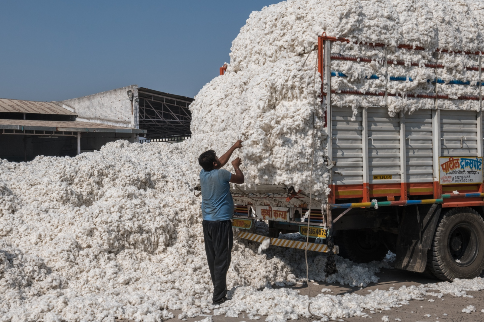 The Radhe Industries cotton factory in Kadi, in the state of Gujarat. Indian cotton growers' costs have been rising, but the prices they are getting for crops have plunged
