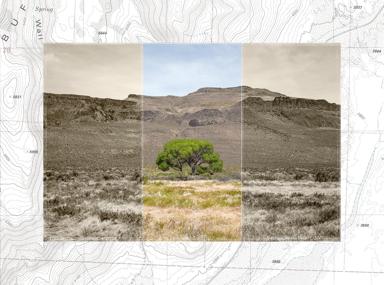 Art and Documentary Photography - Loading 01.WallWEB.JPG