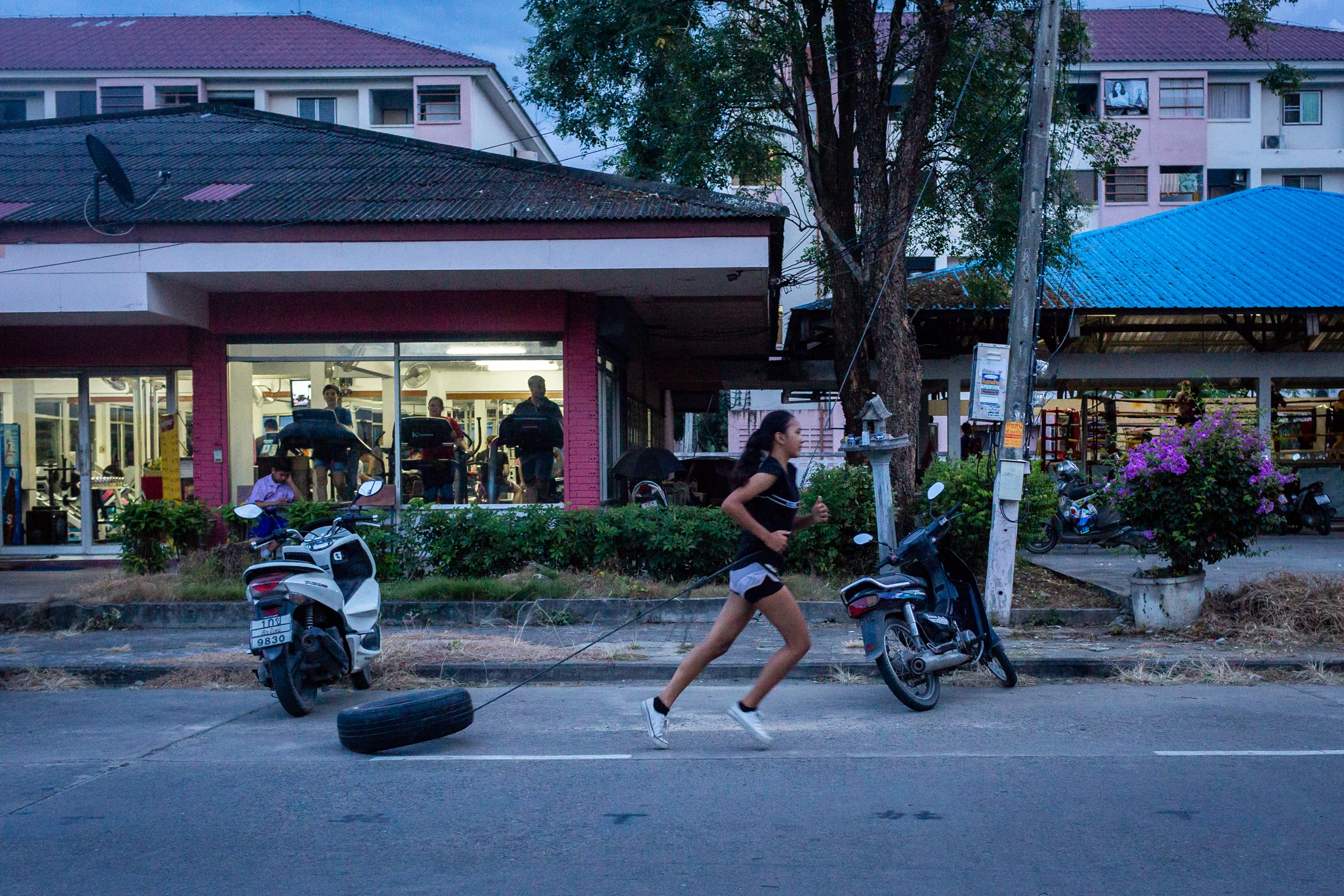 Cookie runs attached to a tire on the streets of Chiang Mai, Thailand, 28 th September 2018.  Muay Thai is an extremely physically demanding sport, so athletes have to push as hard as possible during training in order to be able to perform on the ring.