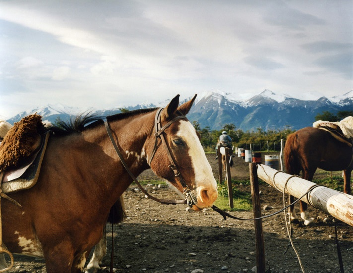 Art and Documentary Photography - Loading Travel_31_Horses_Estancia_Patagonia_Argentina.jpg