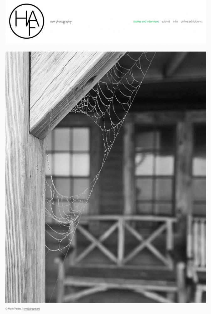 Photography image - Loading HAF_Spiderwebs.png