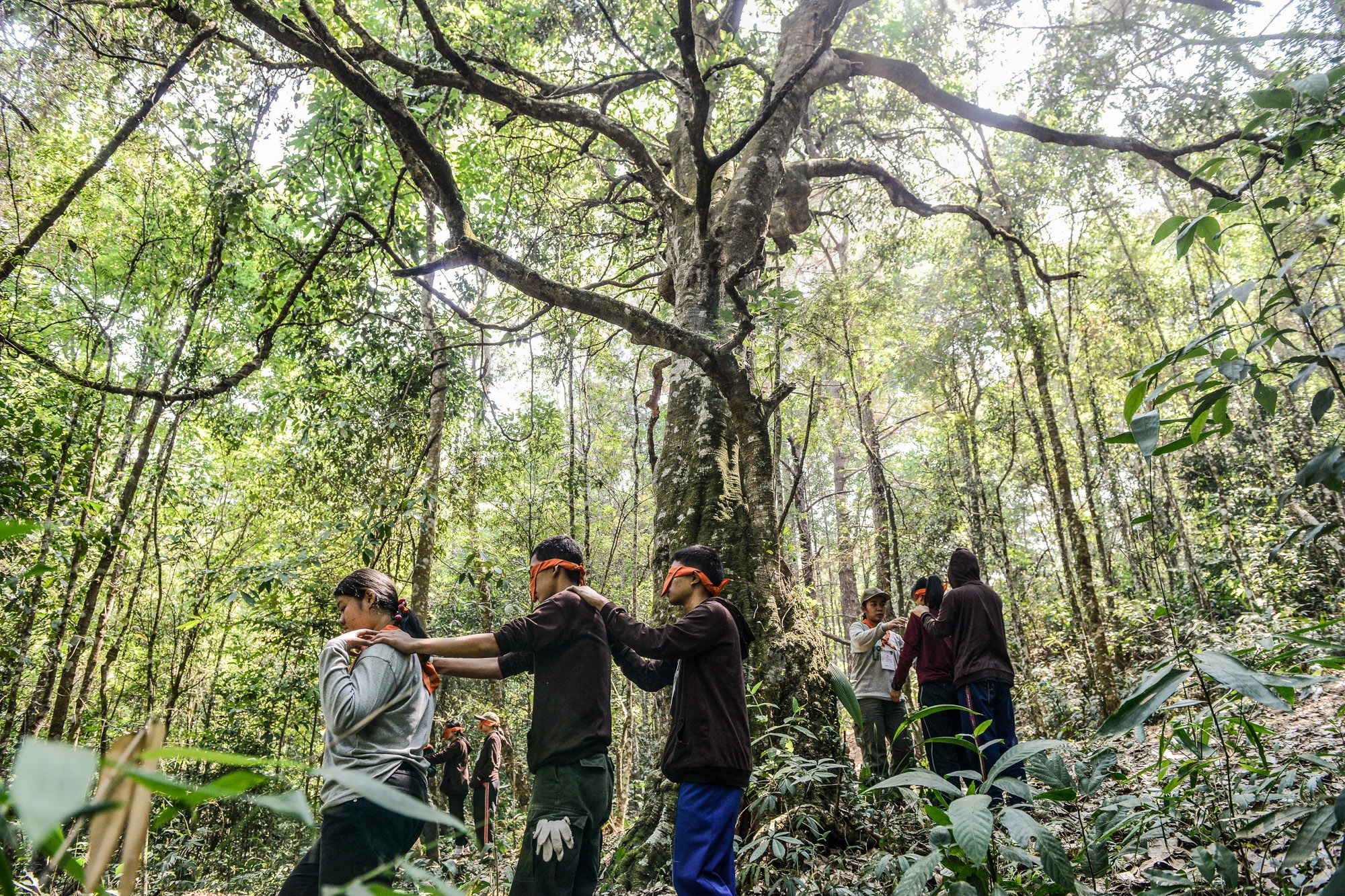Young people use sensory activities to awaken their own sense of connection with nature. They have been implanted with the sustainable values of environmental savings by a group of environmental activists. Chiang Mai, Thailand.