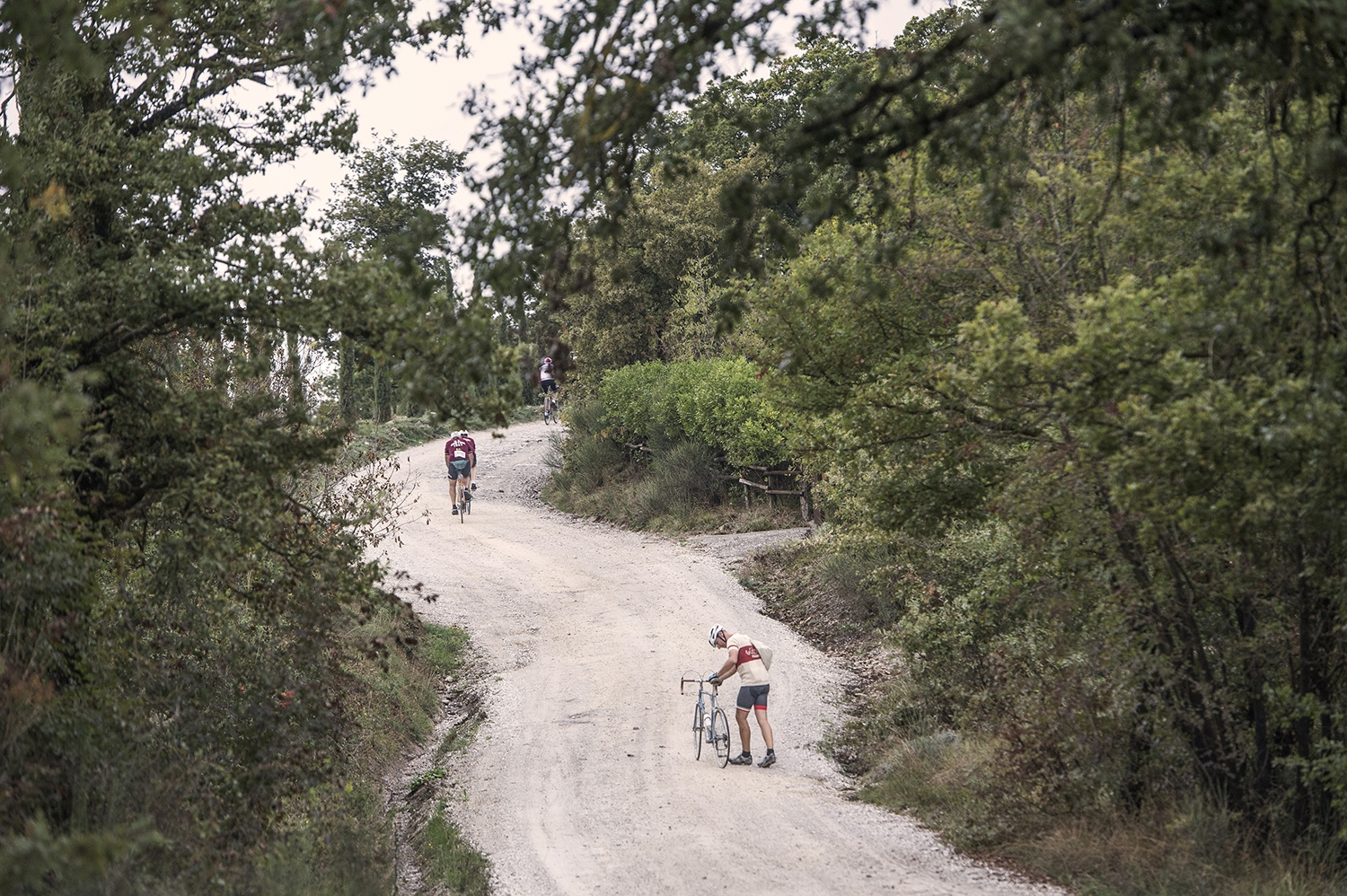 White roads and climbs: the typical eroica