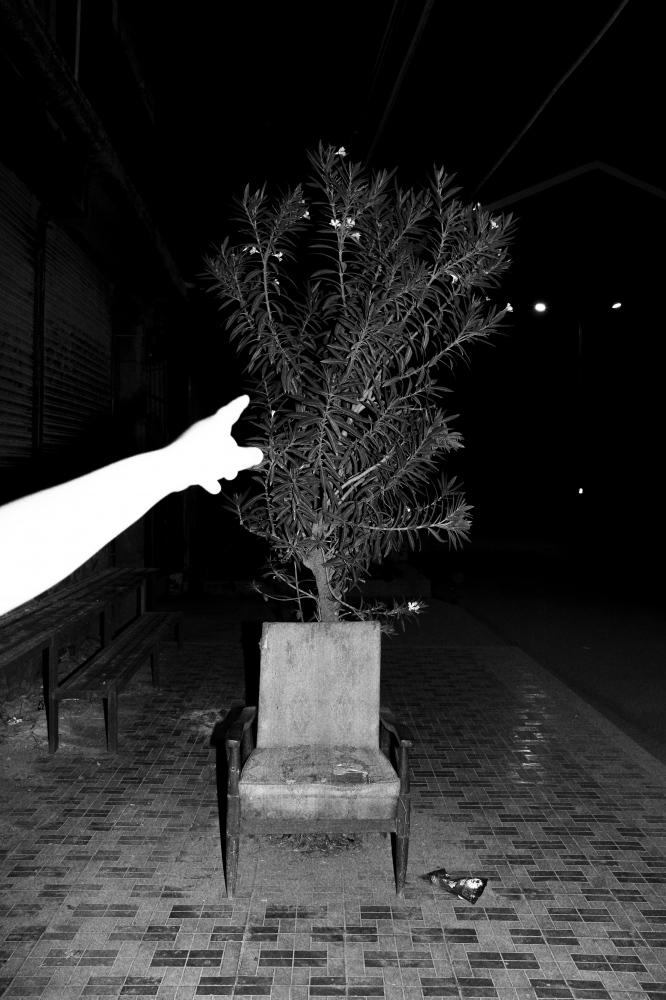Photography image - Loading Endless_winter_02.jpg