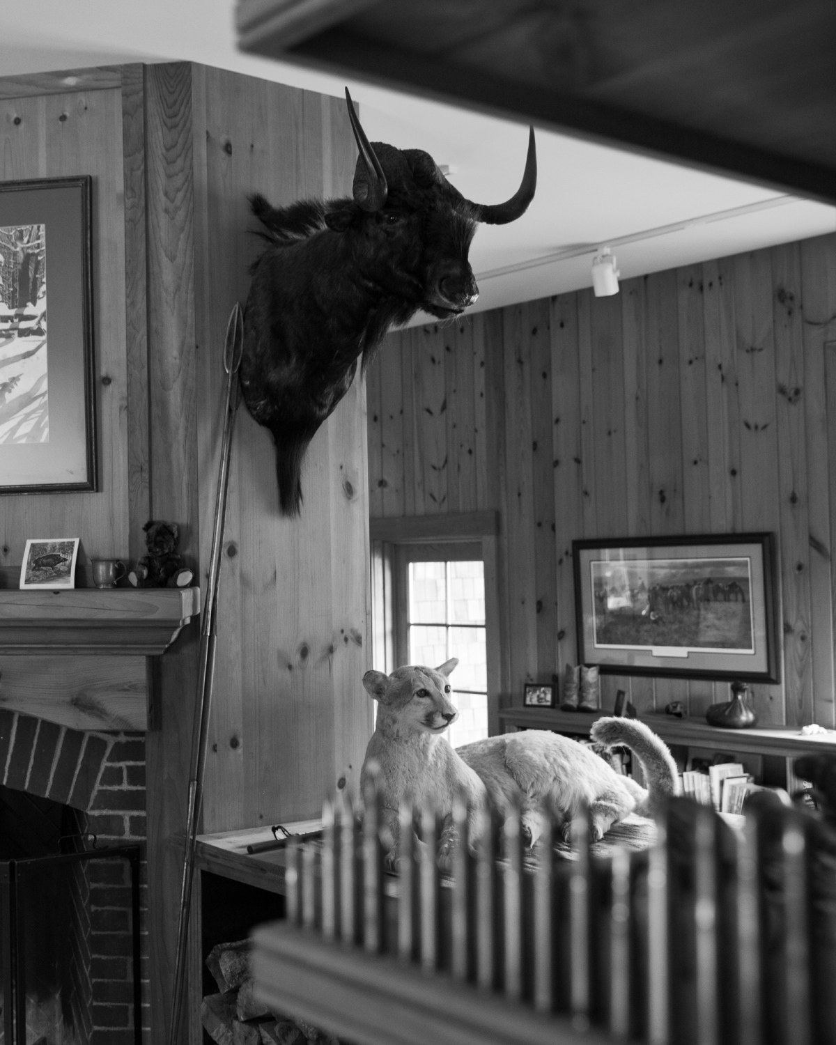 Photography image - Stowe, VT, 2016.