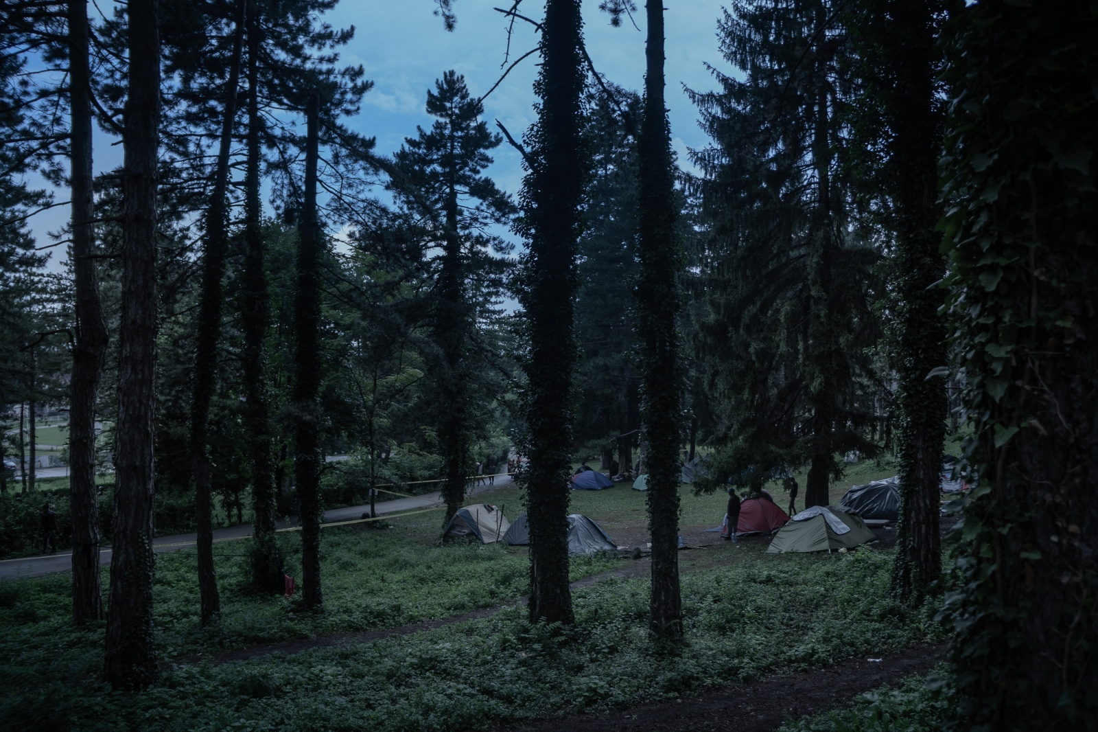 Photography image - Loading Stepien_Kamila_00003.jpg