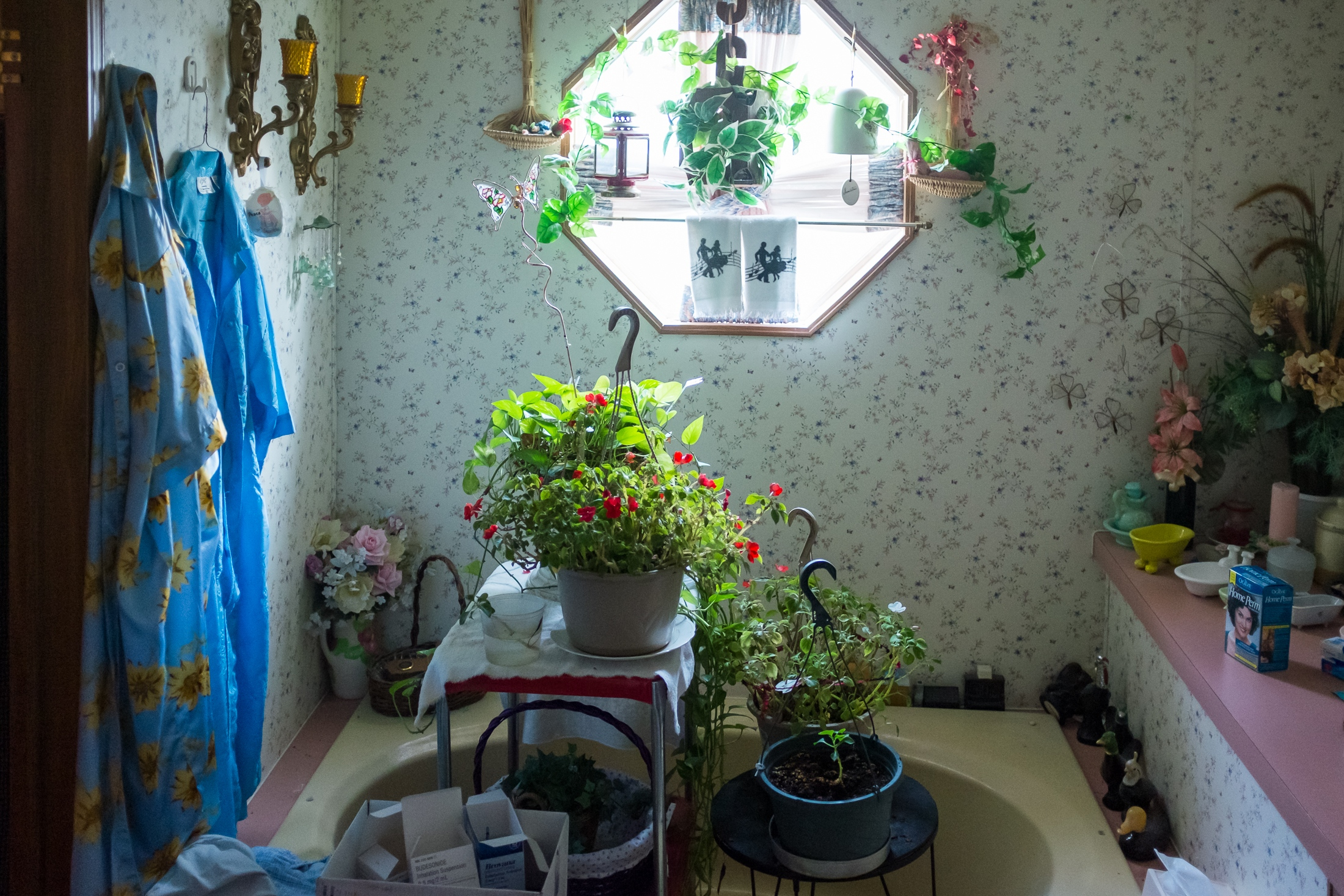 Mary keeps some of her indoor plants inside her bathroom.