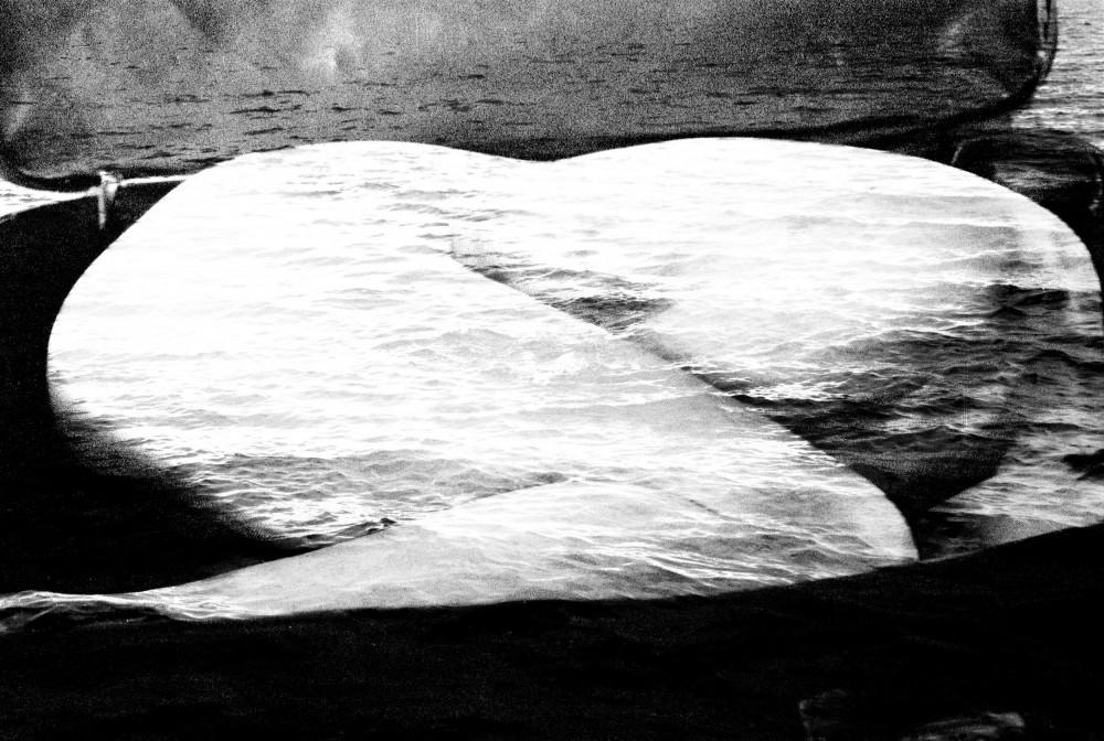 Art and Documentary Photography - Loading El viaje0001_resize_resize.jpg