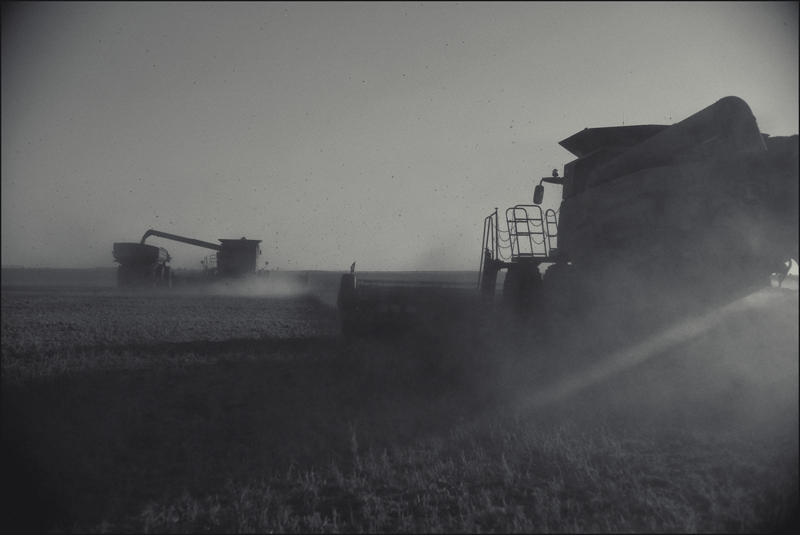 Harvest.Liberal, KS. 2015.