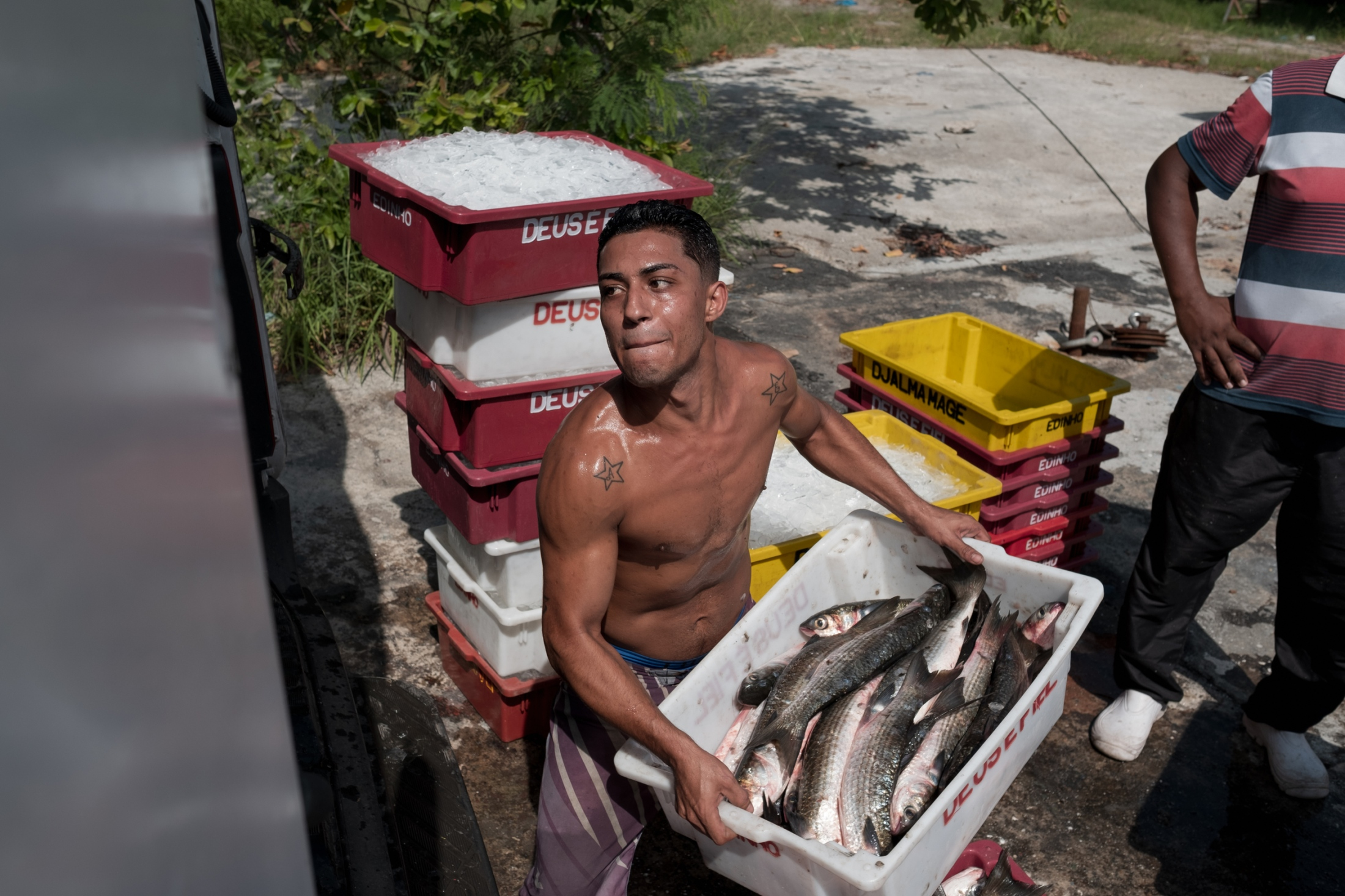 Once sorted and weighed, the fish are taken to markets on an air-conditioned truck. Most established vendors refuse to buy fish from the bay and those that do pay little and irregularly.