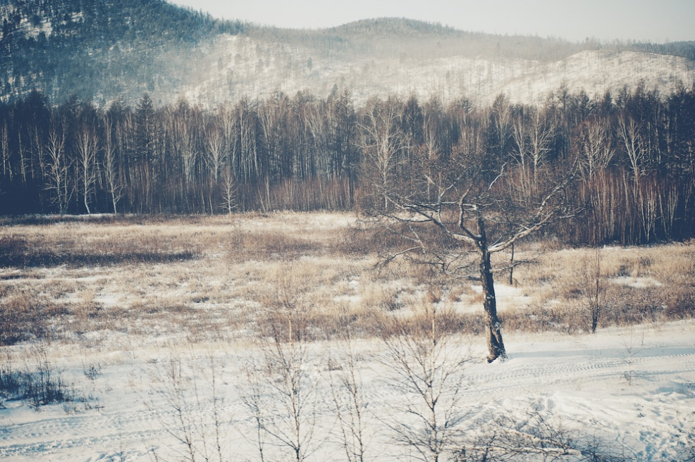 Art and Documentary Photography - Loading siberia (31 of 44).jpg