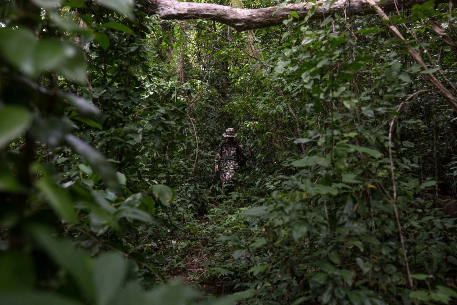 A forest ranger patrols through the forest at the end of a 3 day patrol. This park is located a stones throw from the Cambodian border and sees a lot of movement of illegal loggers entering Thailand from Cambodia and moving west to find the remaining rose wood trees located deeper in the country. Ta Praya National Park, Sa Kaew Province - June 2018