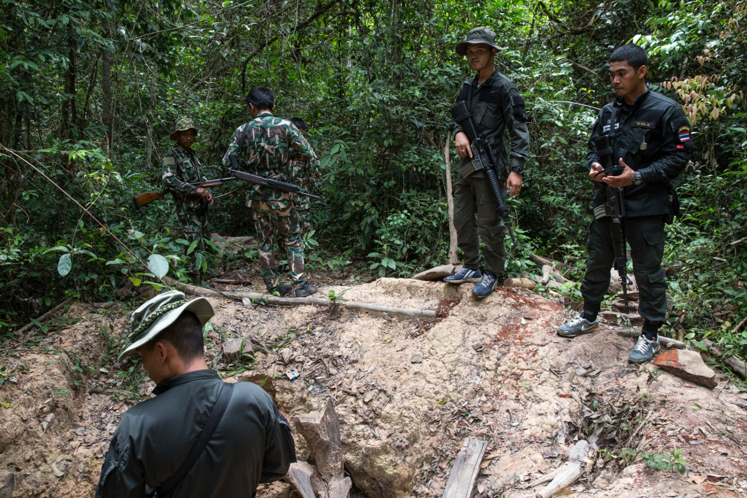The site of a felled rosewood tree with even its roots dug up and removed. This activity only finished a few days before the rangers found the location. Ta Praya National Park, Sa Kaew Province - June 2018